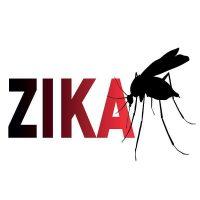 Zika-virus-sq